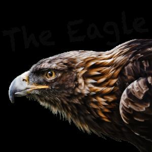 logo the eagle