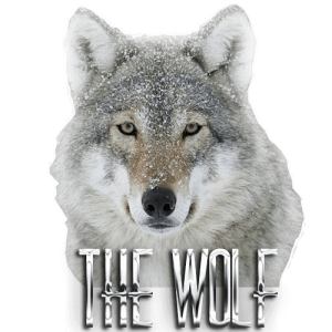 logo the wolf